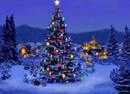 В Ужгороді розкажуть, як реалізували новорічні ялинки (АНОНС)
